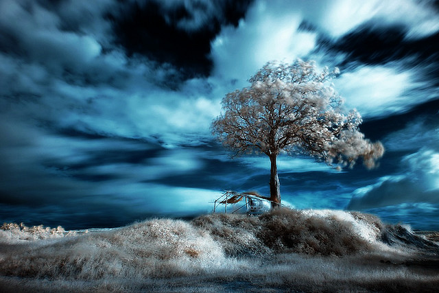 45 Impressive Examples of Infrared Photography | inspirationfeed.com (1/2)