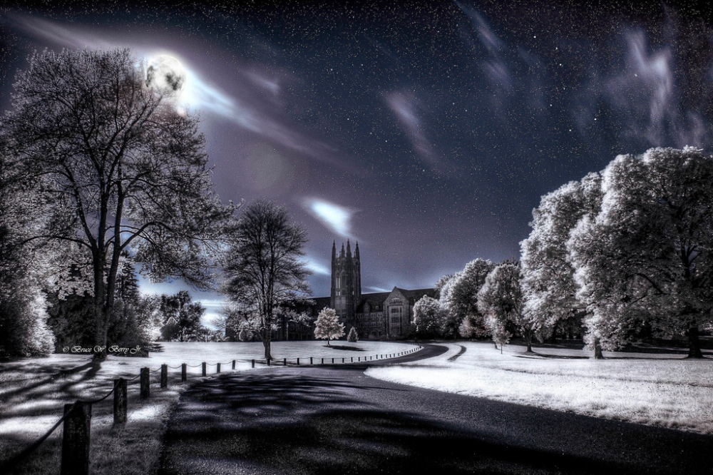 45 Impressive Examples of Infrared Photography | inspirationfeed.com (2/2)